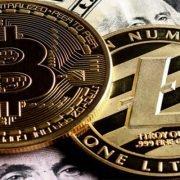 litecoin & bitcoin
